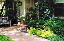 Front walkway and evergreen shrubery